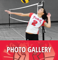 Photo Gallery - Women's Volleyball